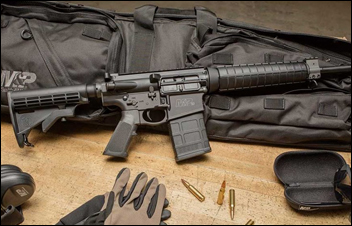 First Look: Smith & Wesson M&P10 Sport