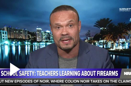 Bongino: Teachers Want to be Armed 'To Keep Their Students Safe'
